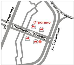 Расписание движения маршрутного автобуса.  Схема остановки маршрутного такси.